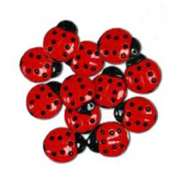 "Favorite Findings 160 ""Ladybugs"""