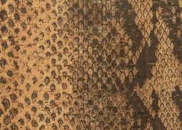 Cork Fabric Python