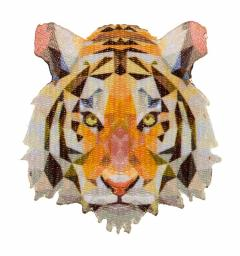 Applikation 3D Tiger