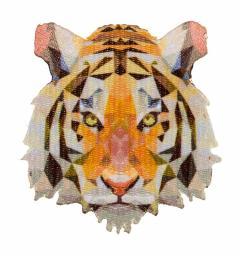Motif 3D Tiger