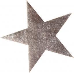 Applikation Stern silber metallic