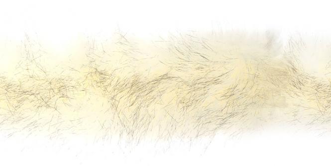Wholesale Faux Fur Trim Artic Fox 5cm