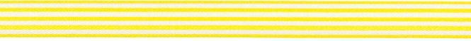 Großhandel Besatzband 9mm Stripes