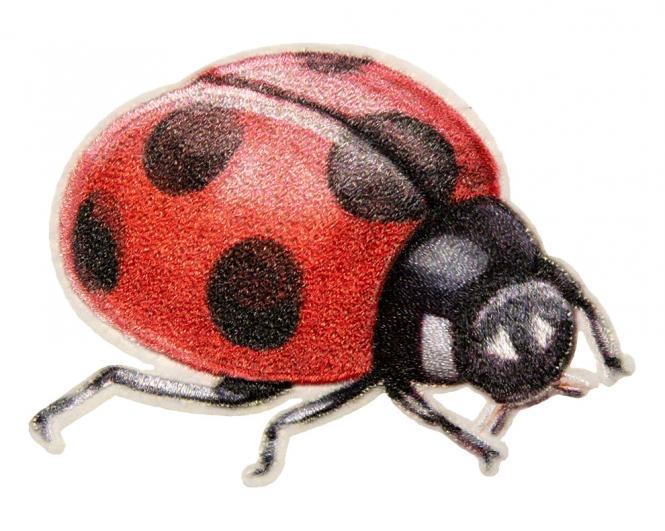 Wholesale Motif Lady Bug