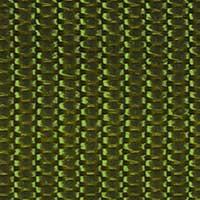 Gurtband 40mm, 4028752292180