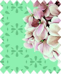 Fabric CM/300, 4029394470189