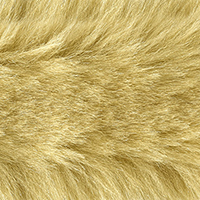 Faux Fur Trim Fox 5Cm, 4028752396406