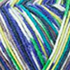 Regia 4-fädig Color 100g, 4082700980215