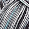Regia 4-fädig Color 100g, 4053859220170