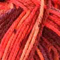 Bravo Color 50g, 4082700836345